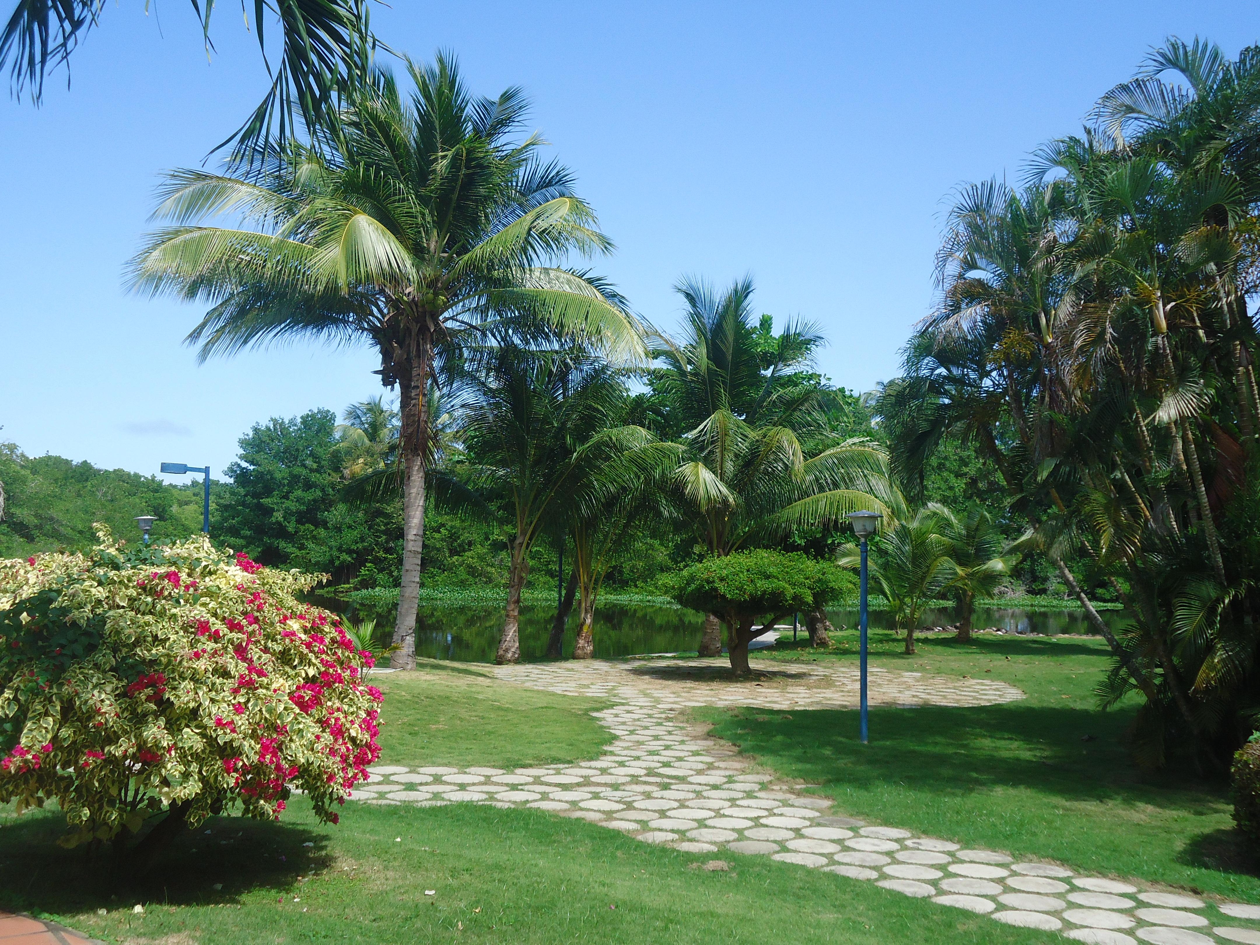 Jardin 0.3
