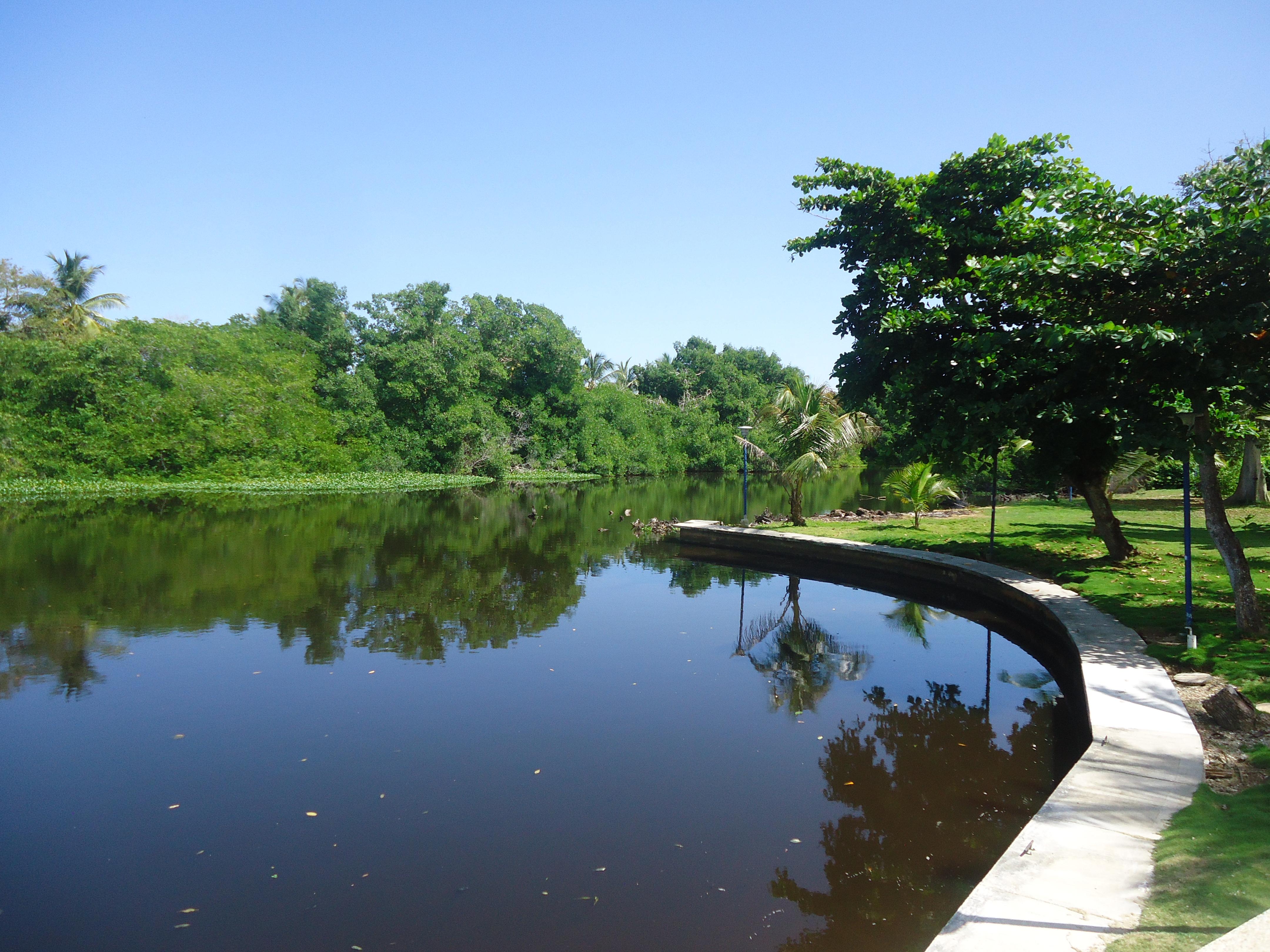 Vista Canal 1